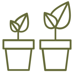 two growing plants icon