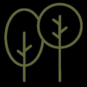 two trees icon