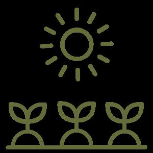 sun over vegetable garden icon