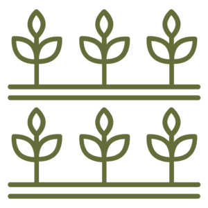 two rows of vegetable garden icon