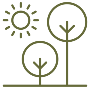 sun and trees icon