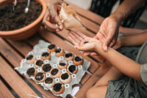 Mother and son planting an eggshell garden