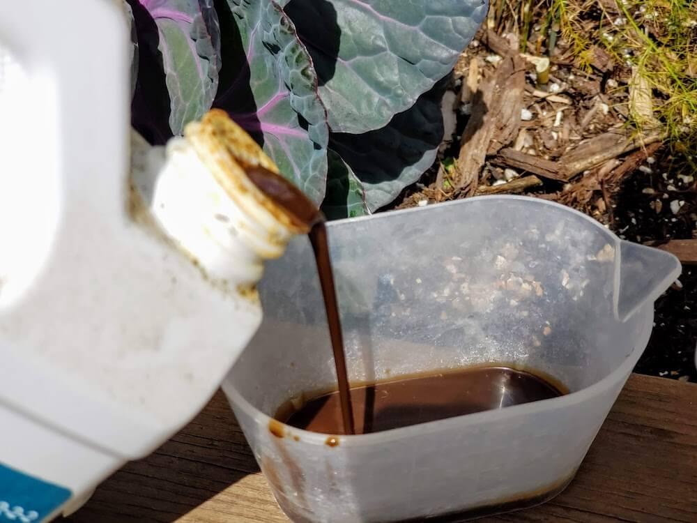 Pouring liquid fertilizer into a cup