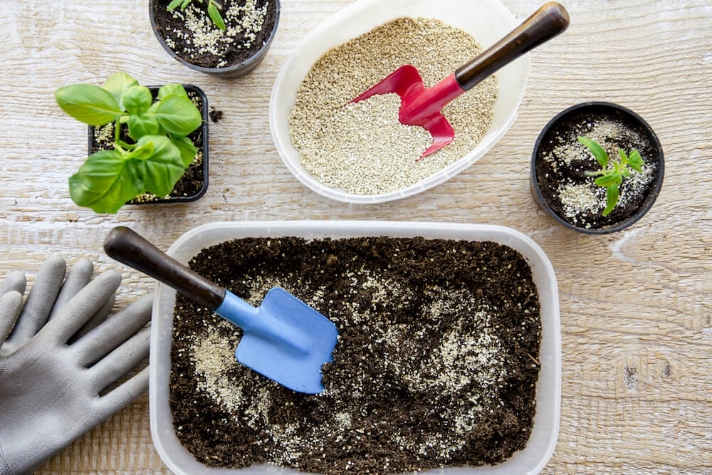Mixing vermiculite granules pellets with black gardening soil improves water retention, airflow, root growth capacity of all the plants growing in pots.
