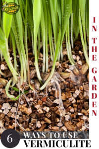 """Vermiculite roots with text, """"Ways to use vermiculite in the garden"""""""