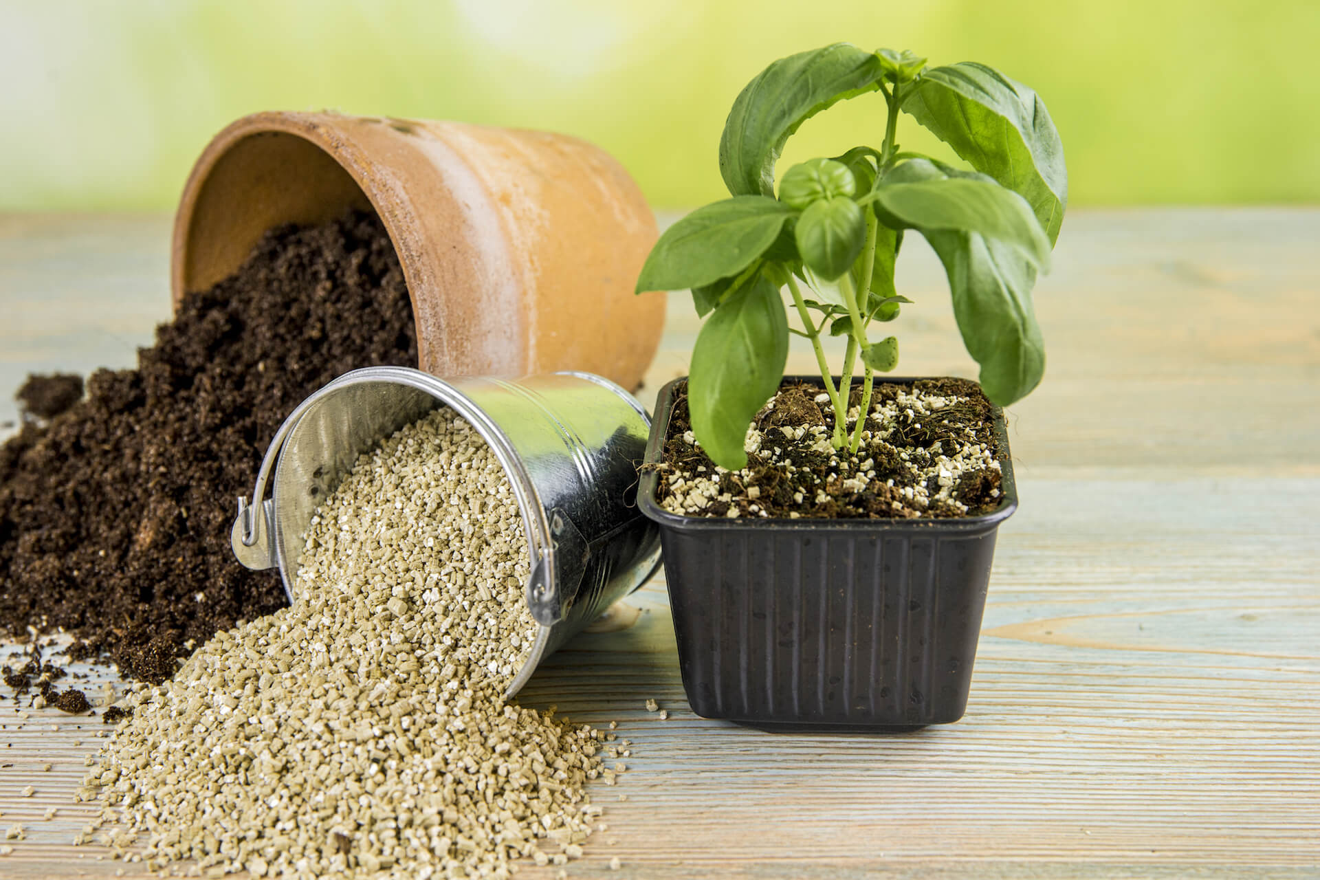Tipped over bucket of vermiculite and tipped over pot of soil next to a sprouting plant.