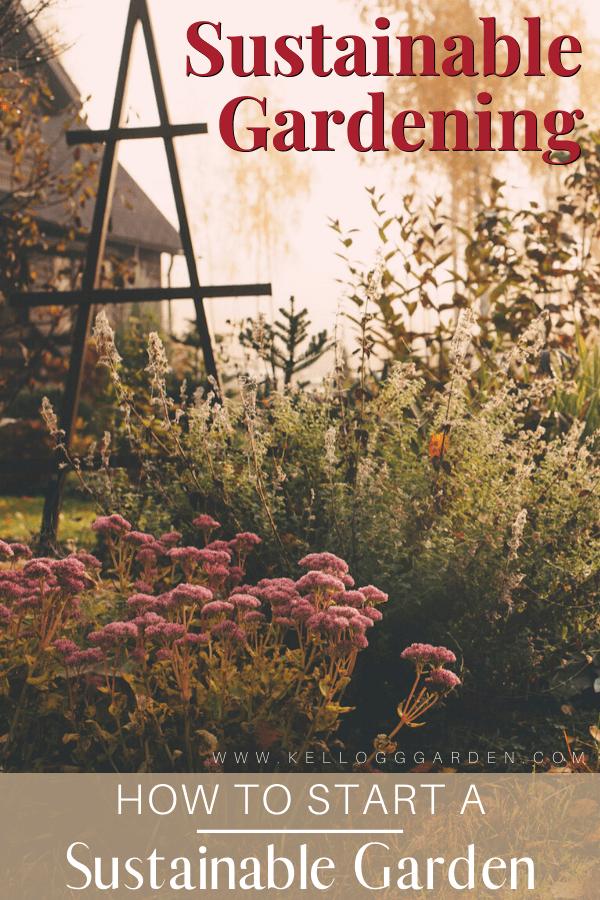 pink flowers in a garden pinterest image