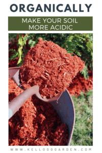 red mulch pinterest image