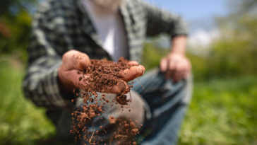 close up of brown soil in farmer hand