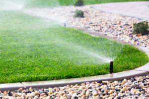 Sprinklers watering a green lawn