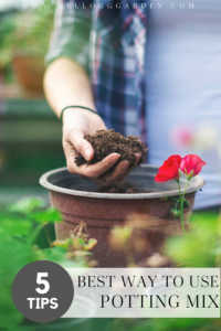 """Woman holding soil over a pot with text, """"5 tips best ways to use potting mix"""""""