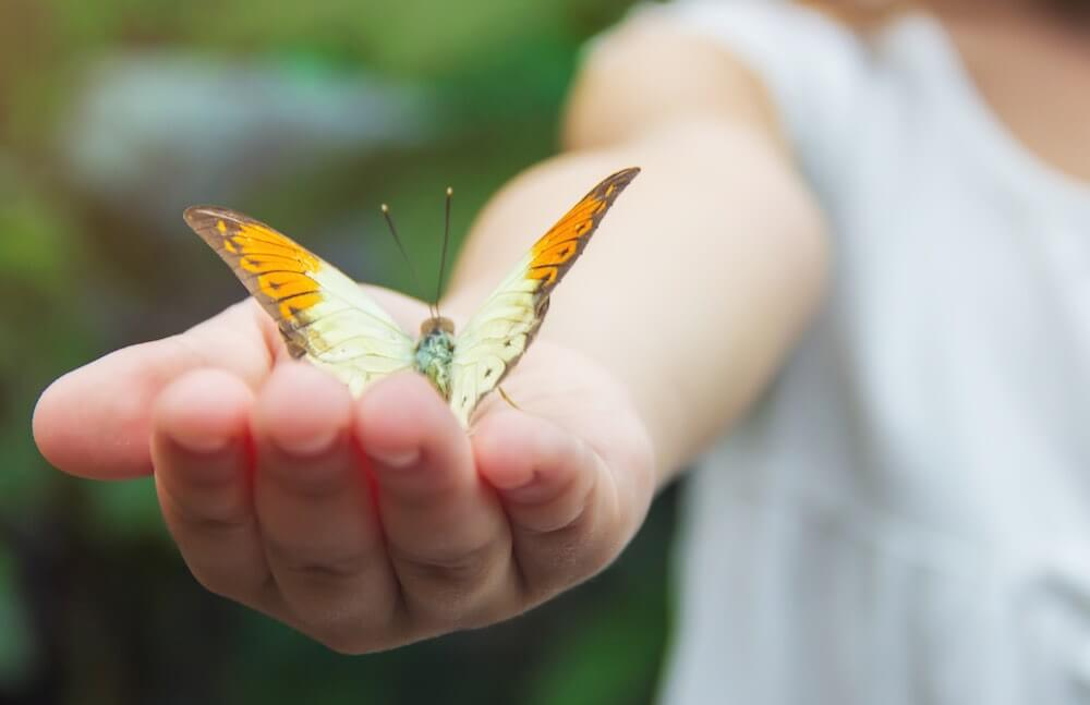 Child with a butterfly