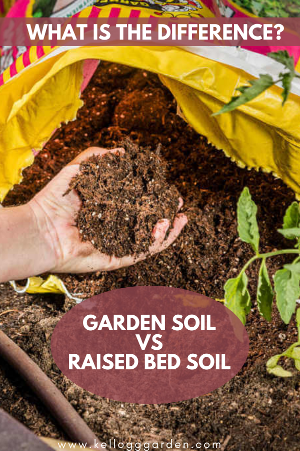 hand holding brown soil