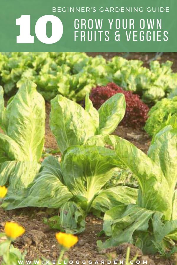 vegetable garden pinterest image