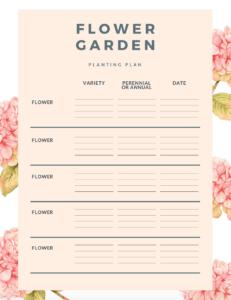 Flower Guide Chart