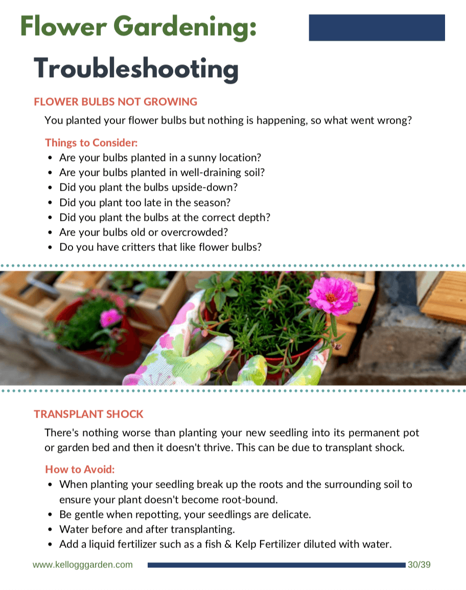 Flower Guide Trouble shooting Page