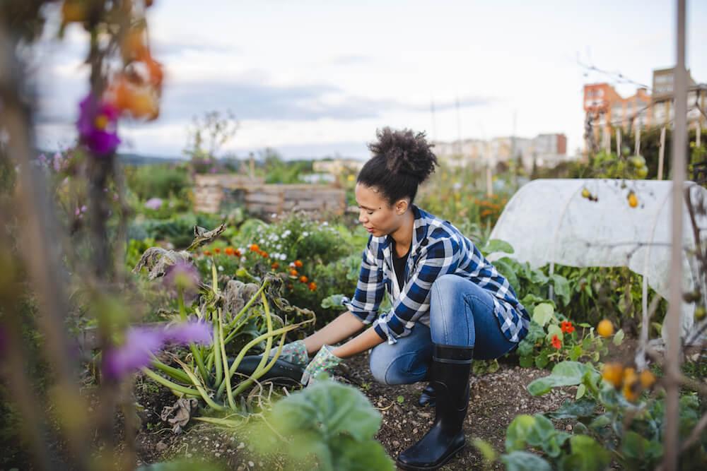 Woman kneeling down working in the garden.