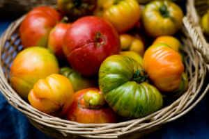 Basket of heirloom tomatoes