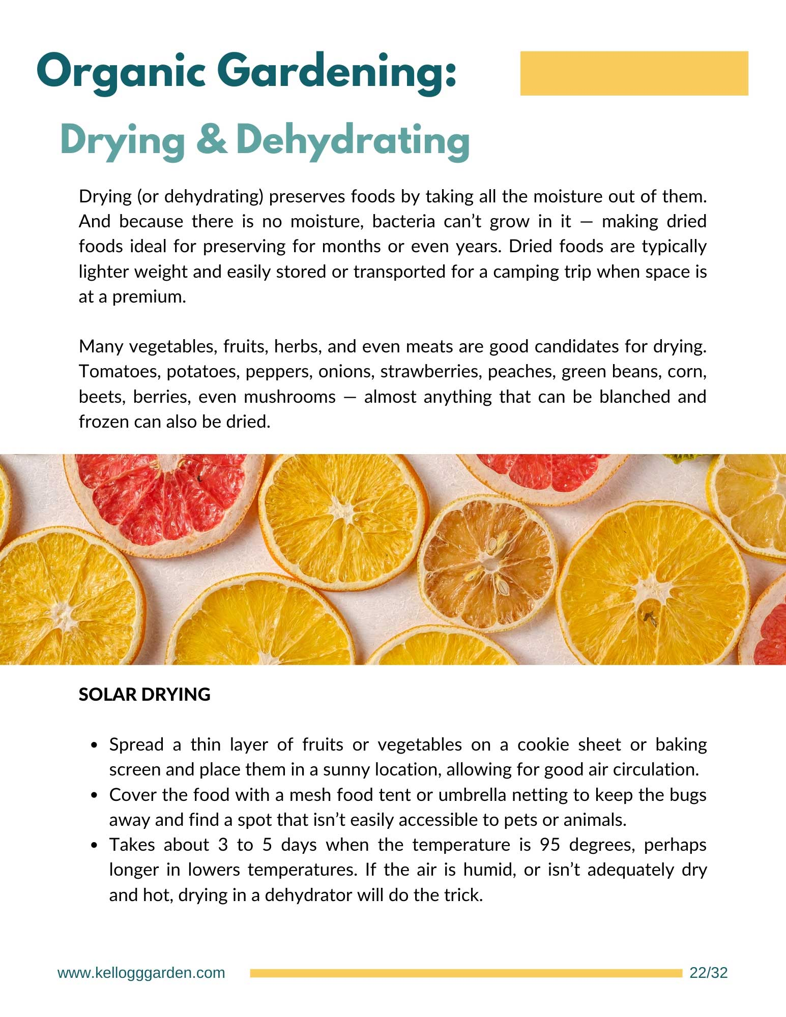 Harvesting guide page on drying and dehydrating