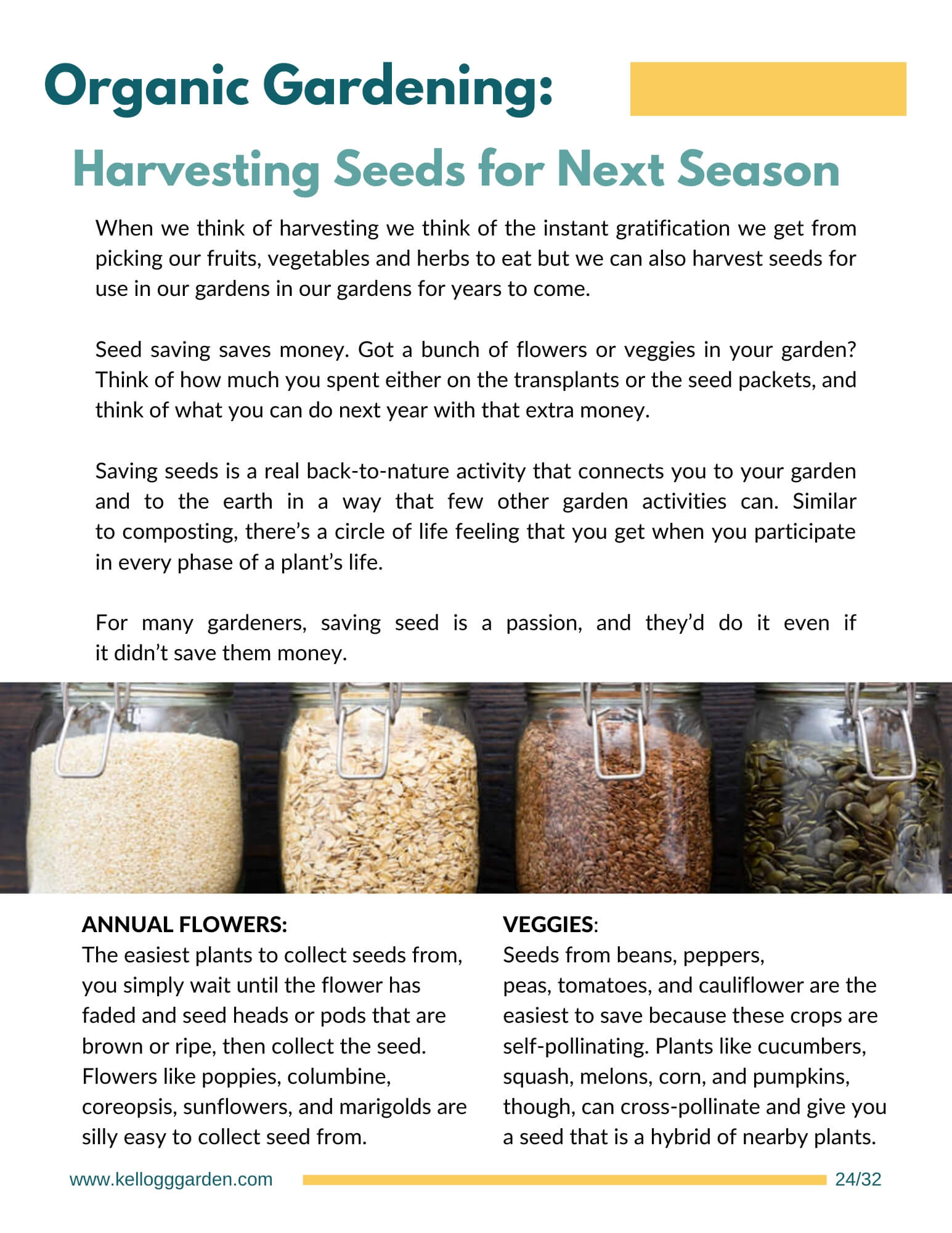 Harvesting guide page on saving seeds.