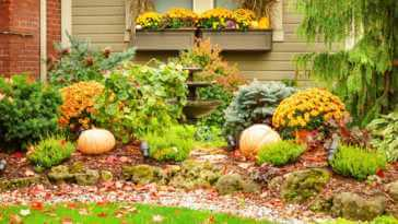 garden with orange pumpkins, leaves, and flowers