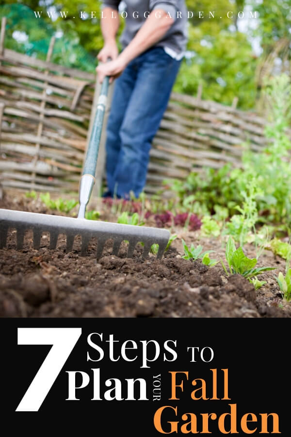 "Man raking his garden with text, ""7 steps to plan your fall garden"""