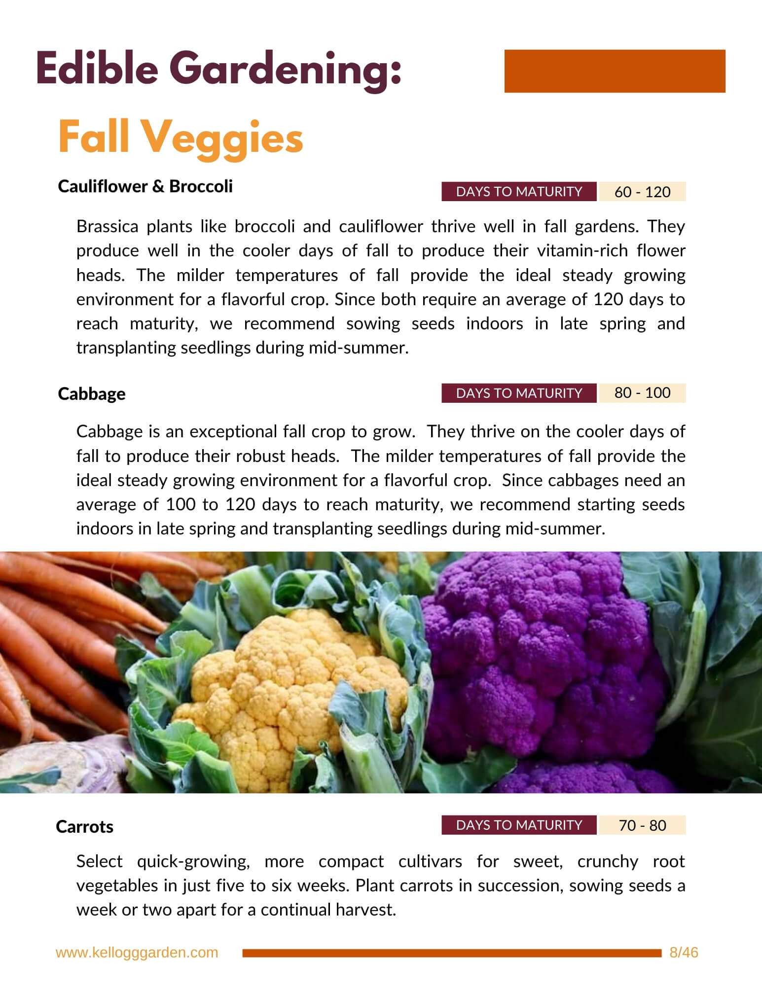 Fall veggies page from fall and winter gardening guide