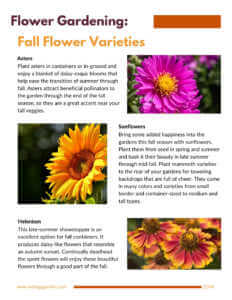 Fall flower page from fall and winter gardening guide.