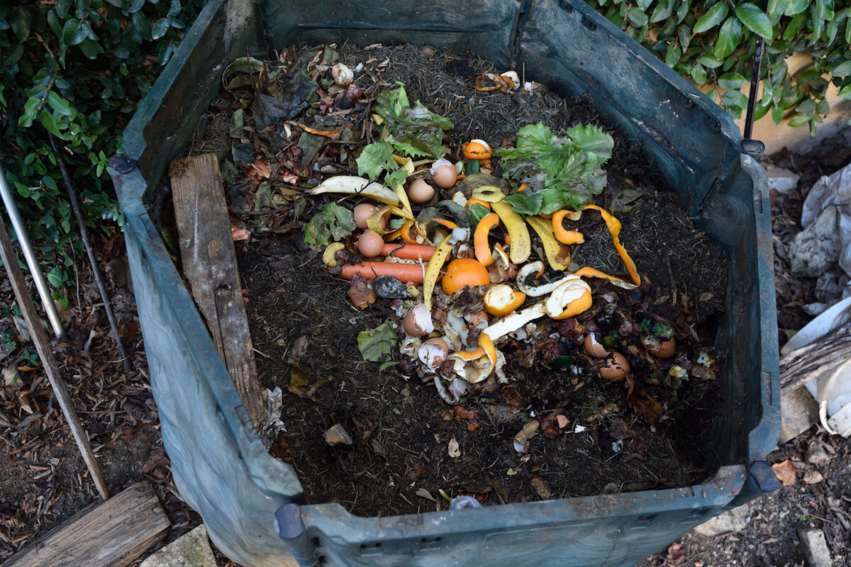 Inside of a compost bin with kitchen vegetable scraps.