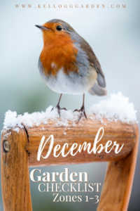 """Robin perched on a snowy shovel handle with text, """"December Garden Checklist Zones 1-3"""""""