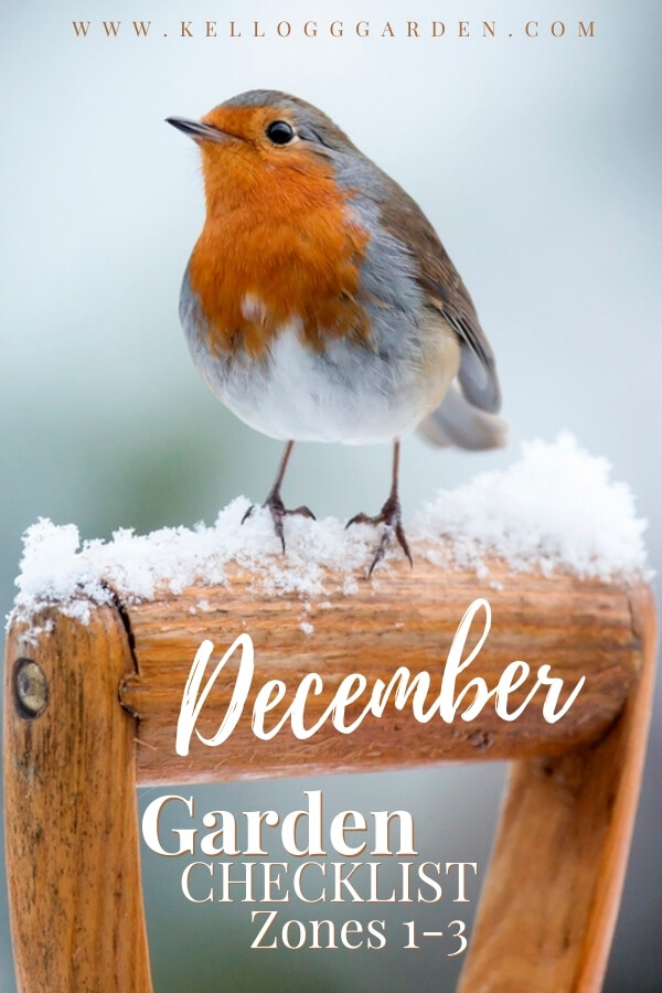 "Robin perched on a snowy shovel handle with text, ""December Garden Checklist Zones 1-3"""