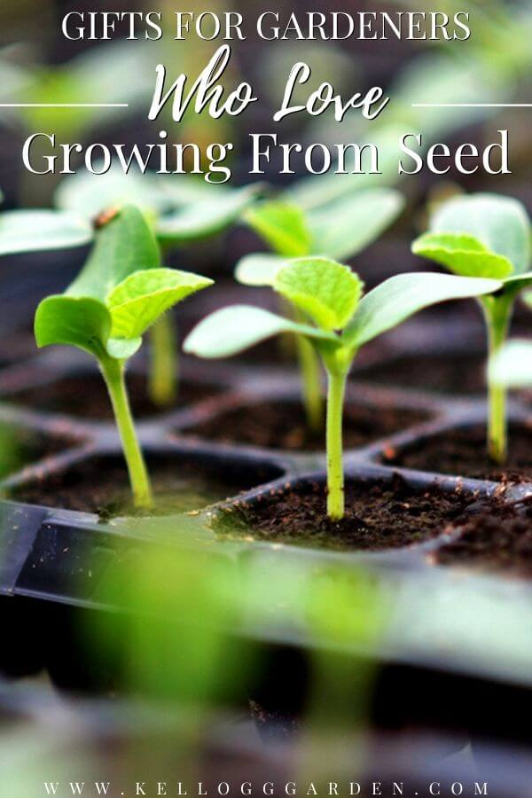 """Seed starting tray with small sprouts, with text, """"Gifts for gardeners who love growing from seed"""""""