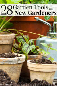 """Garden pots with vegetables and herbs with text, """"28 garden tools for new gardeners""""."""