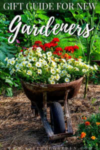 """Flowers in a wheelbarrow in a flower garden with text, """"Gift guide for new gardeners""""."""