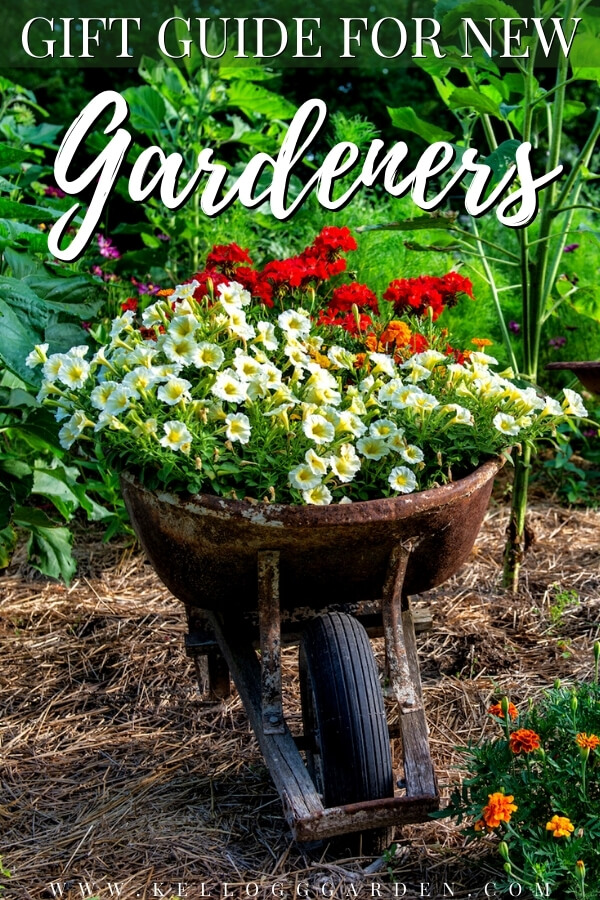 "Flowers in a wheelbarrow in a flower garden with text, ""Gift guide for new gardeners""."