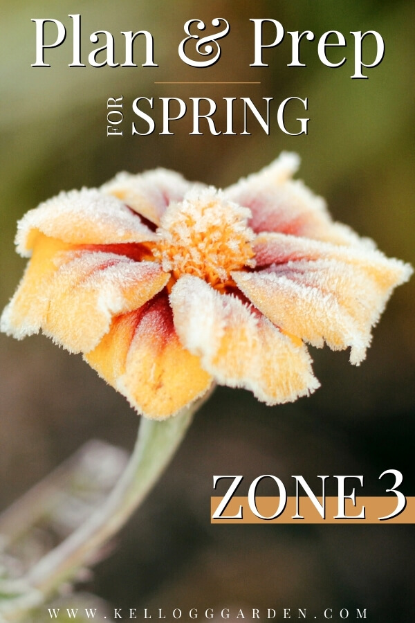 "Orange frosted flower with text, ""Plan and prep for spring, zone 3"""