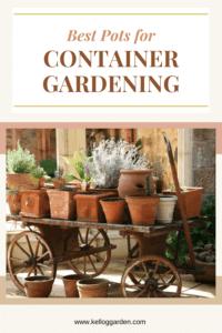 Terra-cotta pots in garden display