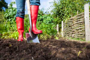 a gardener wearing bright red wellies digging over soil in a vegetable patch.