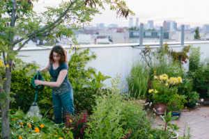 Woman watering a rooftop garden.