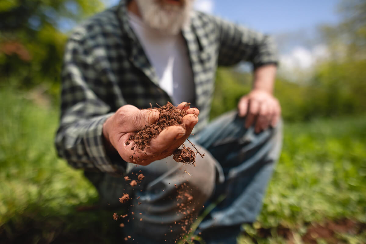 A farmer holding out his hand with soil.