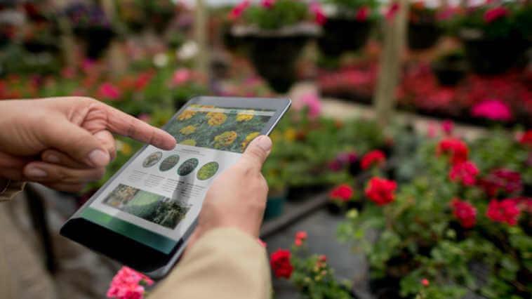 Hands using a tablet computer at a garden center