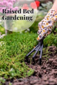 woman's hand with gardening glove raking soil in garden.