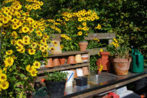 Garden bench with pots, tools, and yellow flowers