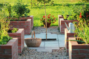 A vegetable garden in raised brick gardening beds.