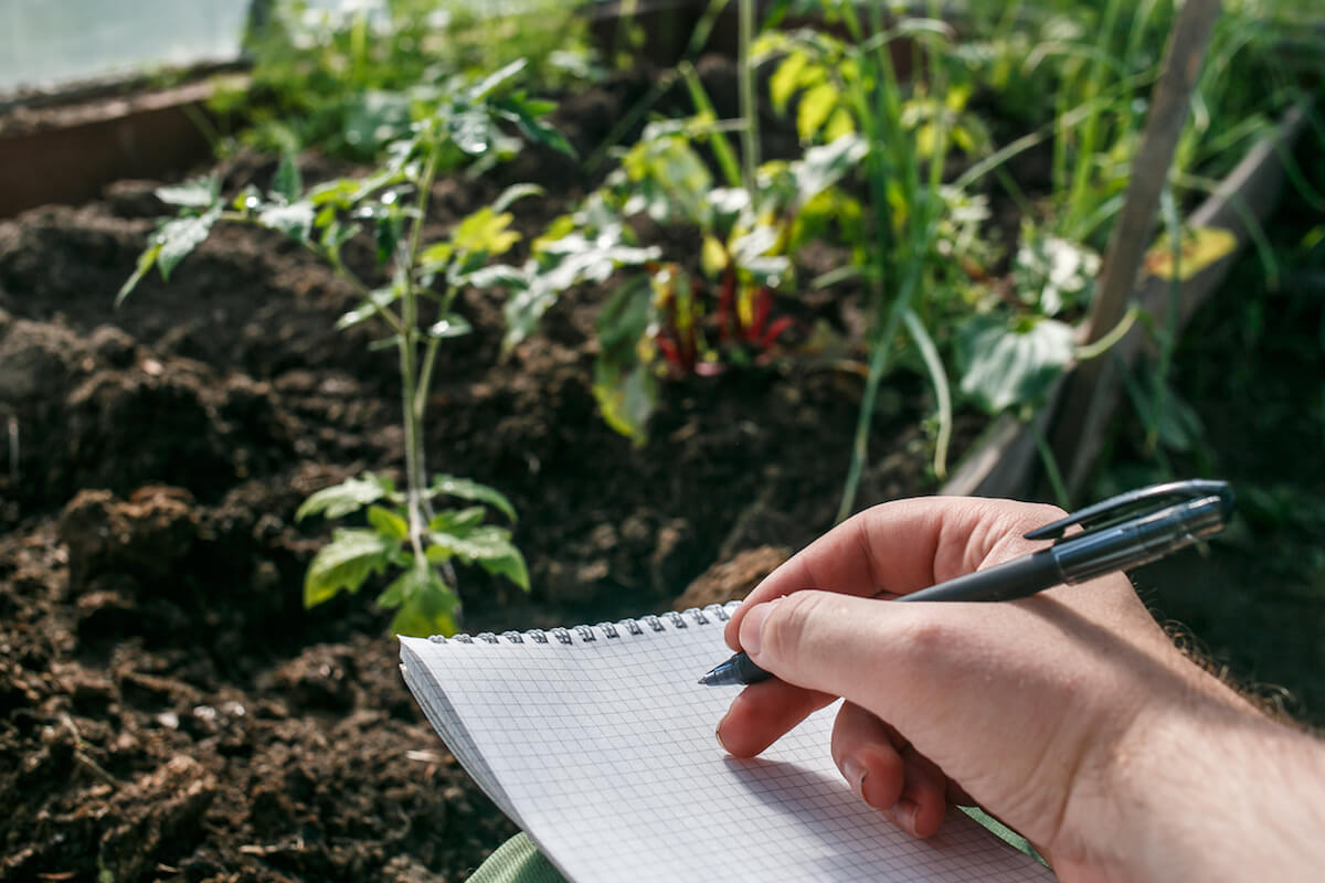 Closeup hands of greenhouse worker taking notes in seedlings in notebook.