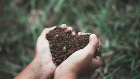 Child hand holding the soil in the heart shape.