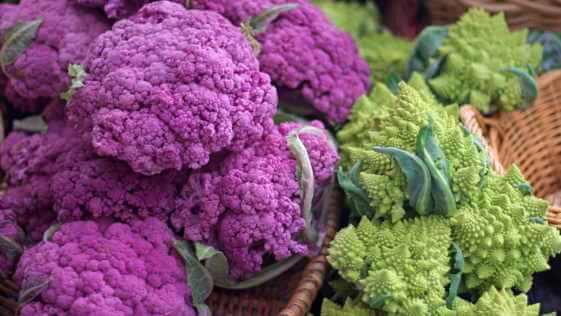 Baskets of purple cauliflower and green romanesco cauliflower