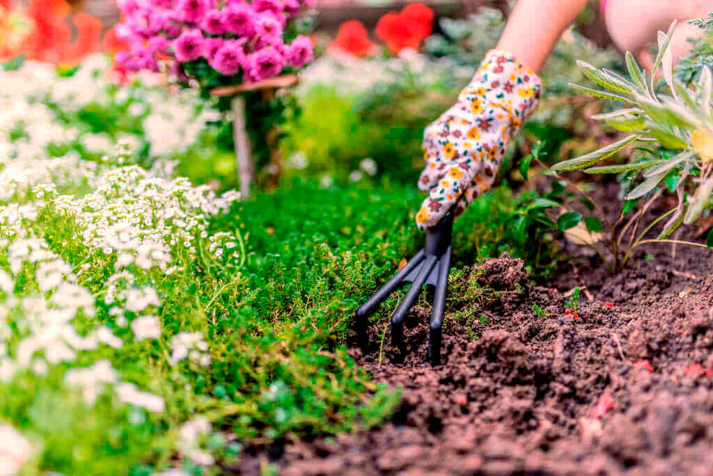 A hand wearing garden gloves digging into soil