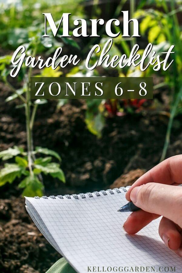 handing writing on paper in front of garden