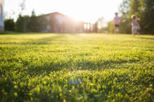 close up of lawn with a home and children playing in the background